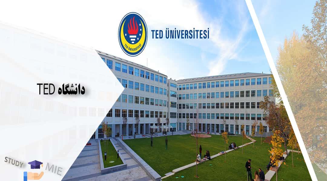 دانشگاه TED