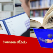 دانشگاه Swansea