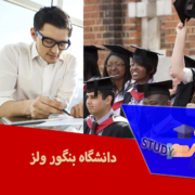 دانشگاه بنگور ولز