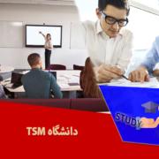دانشگاه TSM