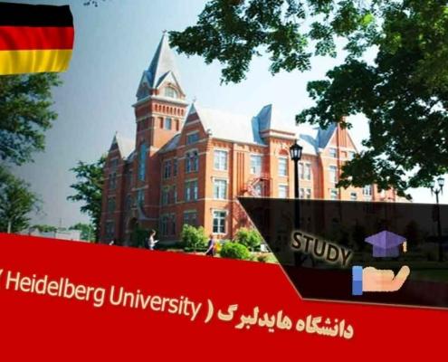 دانشگاه هایدلبرگ ( Heidelberg University )