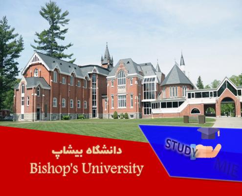 دانشگاه بیشاپ