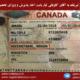 ویزای تحصیلی کانادا آقای کوشا کاویانی